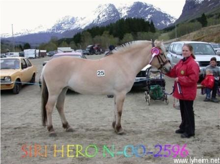 hest og hemmeligheter